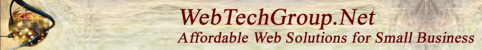 Web Tech Group, Inc.